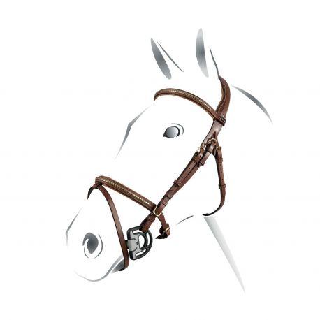 Briglia Equestro